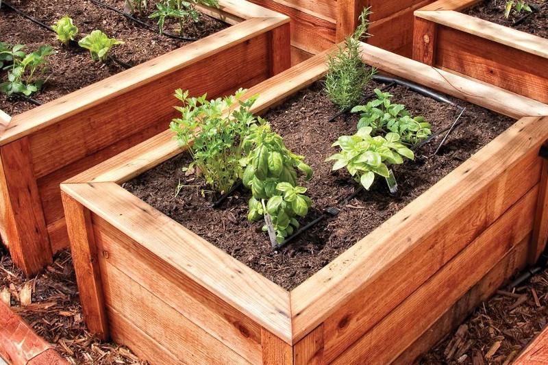 Impianto di irrigazione a goccia il tuo giardiniere a milano for Impianto irrigazione vasi