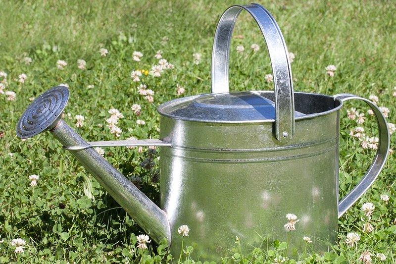 quale impianto di irrigazione scegliere per il nostro giardino?