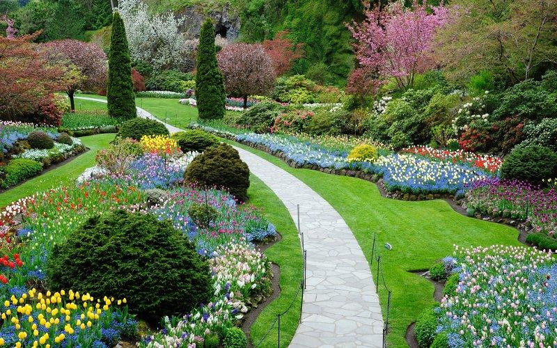 Come progettare il giardino alberi siepi e vialetti per la vostra oasi verde - Progettare il giardino ...