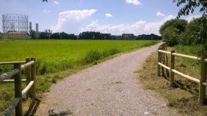 Parco forlanini milano