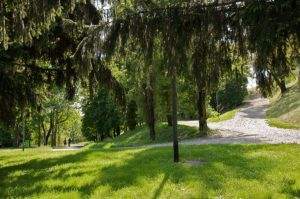 Parco monte stella milano